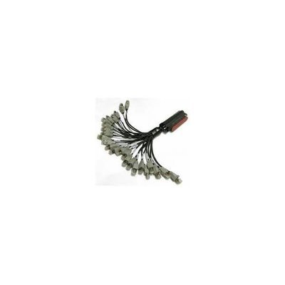 NetVanta Active Reach 36 Inch Hydra Cable
