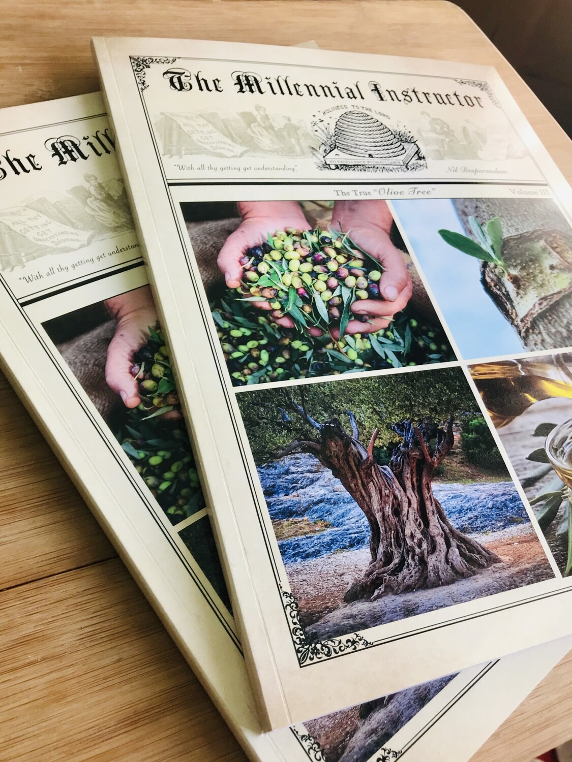 "Fall Special! 2 Copies Volume III ""The True Olive Tree ""for $30 and FREE PRIORITY SHIPPING"