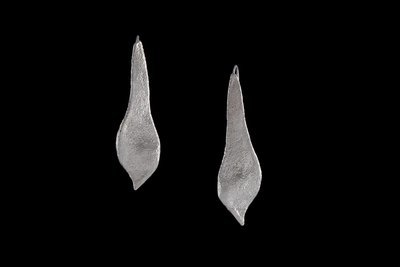 Sterling Silver Pressed Leaf Earrings