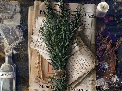 Oct 15: Herbal Potions and Fall Magic (In Person)