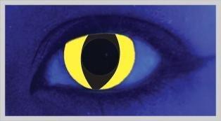 UV Yellow Cat - From £19.99