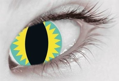 Yellow & Blue Slit Eye Mermaid - From £19.99