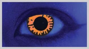 UV Twilight - From £19.99