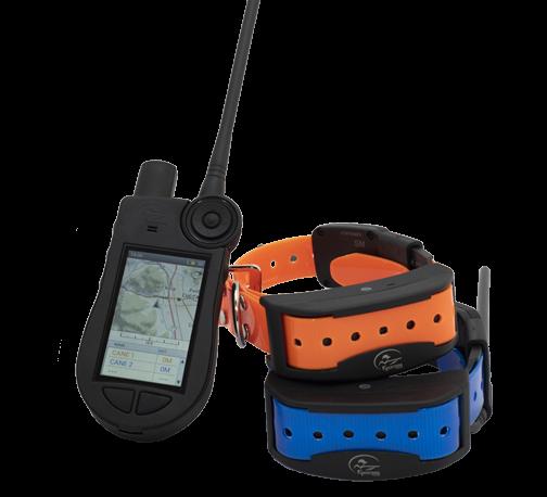 TEK 2.0 PALMARE + 2 COLLARI GPS - CANICOM