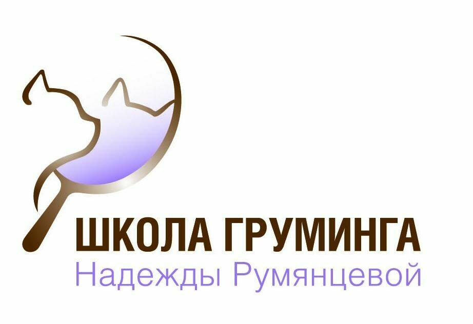 """экспресс курс по грумингу кошек """"Интенсив"""" 17-21 февраля 2020 оплата частями"""
