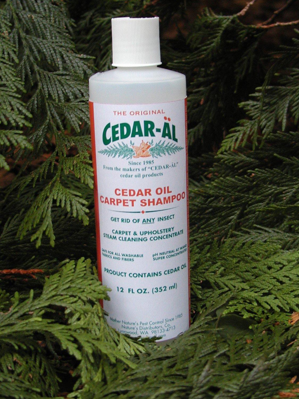 CEDAR-AL Cedar Carpet Shampoo