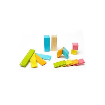 Tegu Toys 14 Piece Magnetic Wooden Block