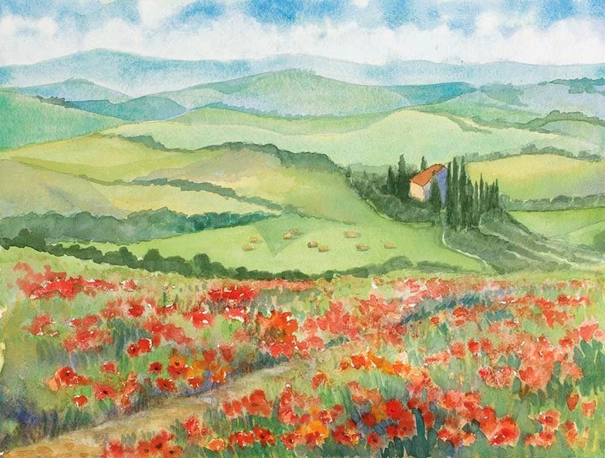 Poppy View in San Quirico, Tuscany Italy