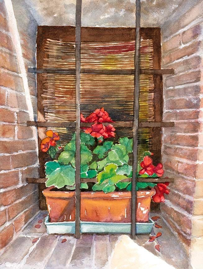 Geraniums in Window in Montepulciano