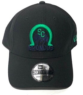 Adult 39Thirty Green/Blue Logo Hat