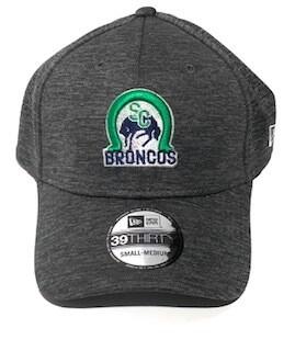 Adult 39Thirty Grey Hat