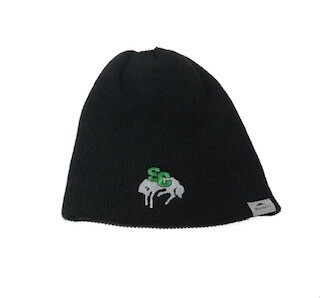 Roots Slouch Toque