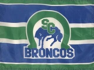 Large Bronco Flag