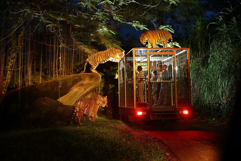 Bali Safari & Marine Park (10% OFF)