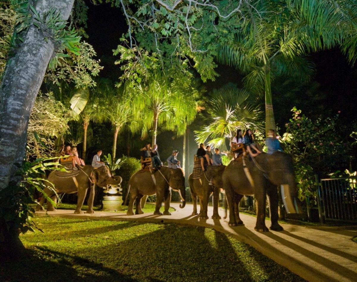 Elephant Safari Park & Lodge (up to 15%)