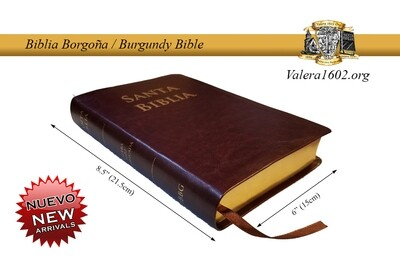 Biblia Burdeos / Burgundy Bible