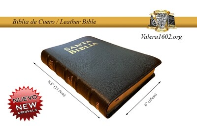 Biblia de Cuero / Leather Bible