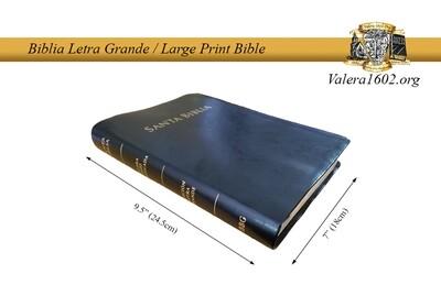 Letra Grande / Large Print