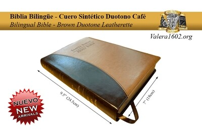 Bilingüe Duotono Café / Bilingual Brown Duotone