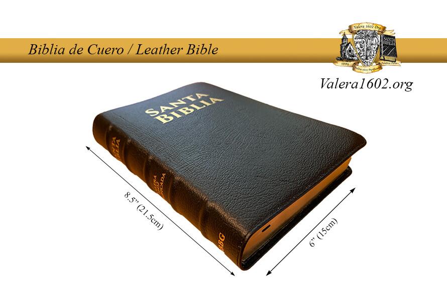 Biblia de Cuero / Leather Bible