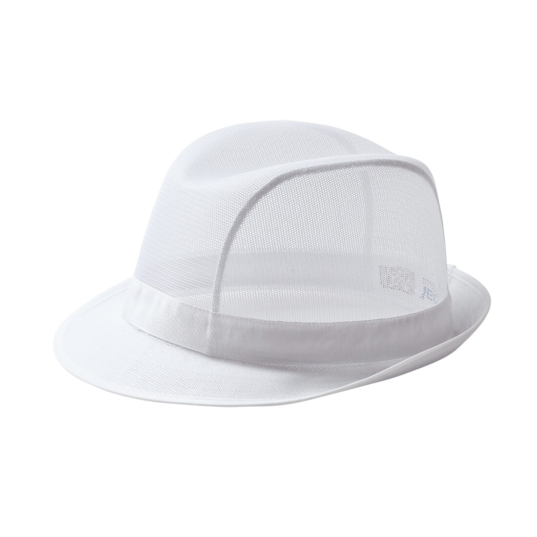 C600 TRILBY HAT