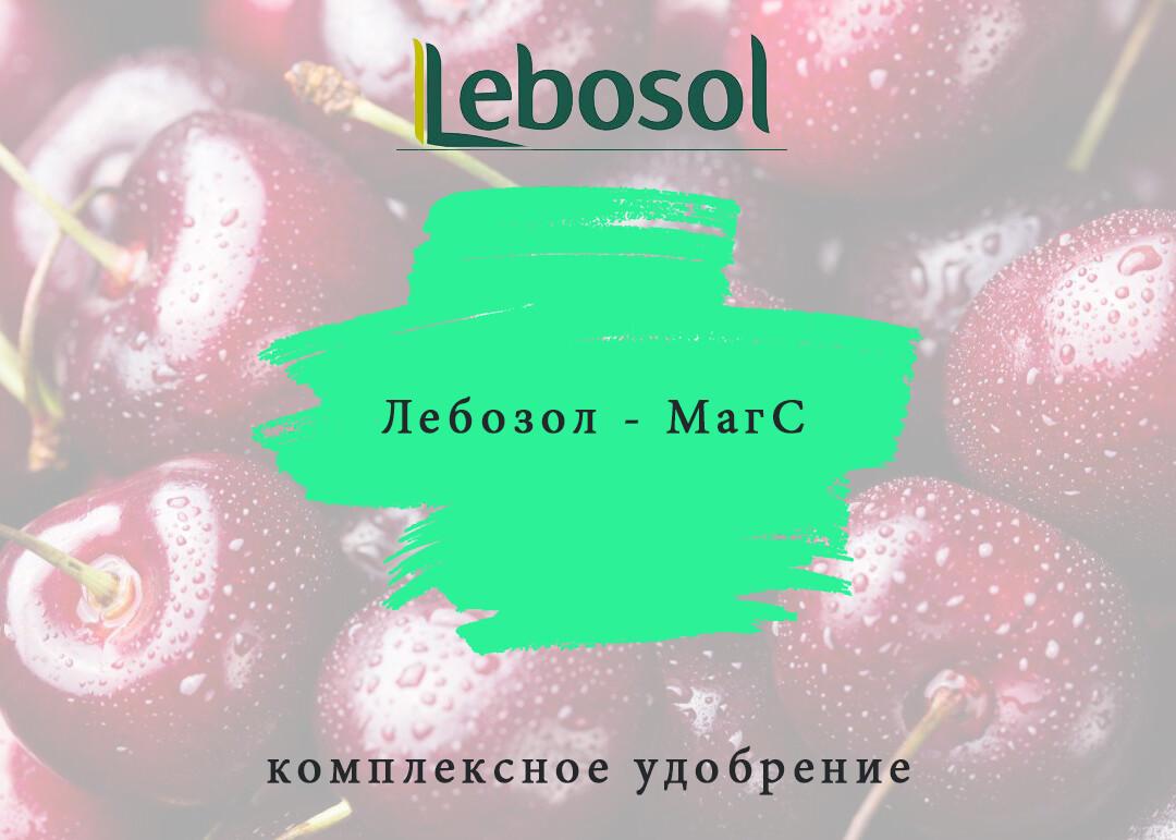 Лебозол - МагС