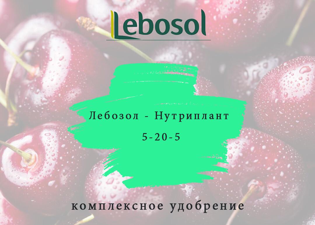 Лебозол - Нутриплант 5-20-5