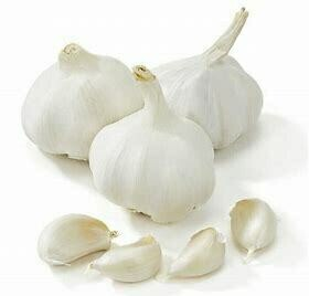 Garlic  (Spanish)