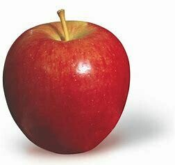 Apple (Royal Gala)