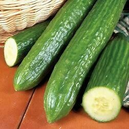 Cucumber (Large)
