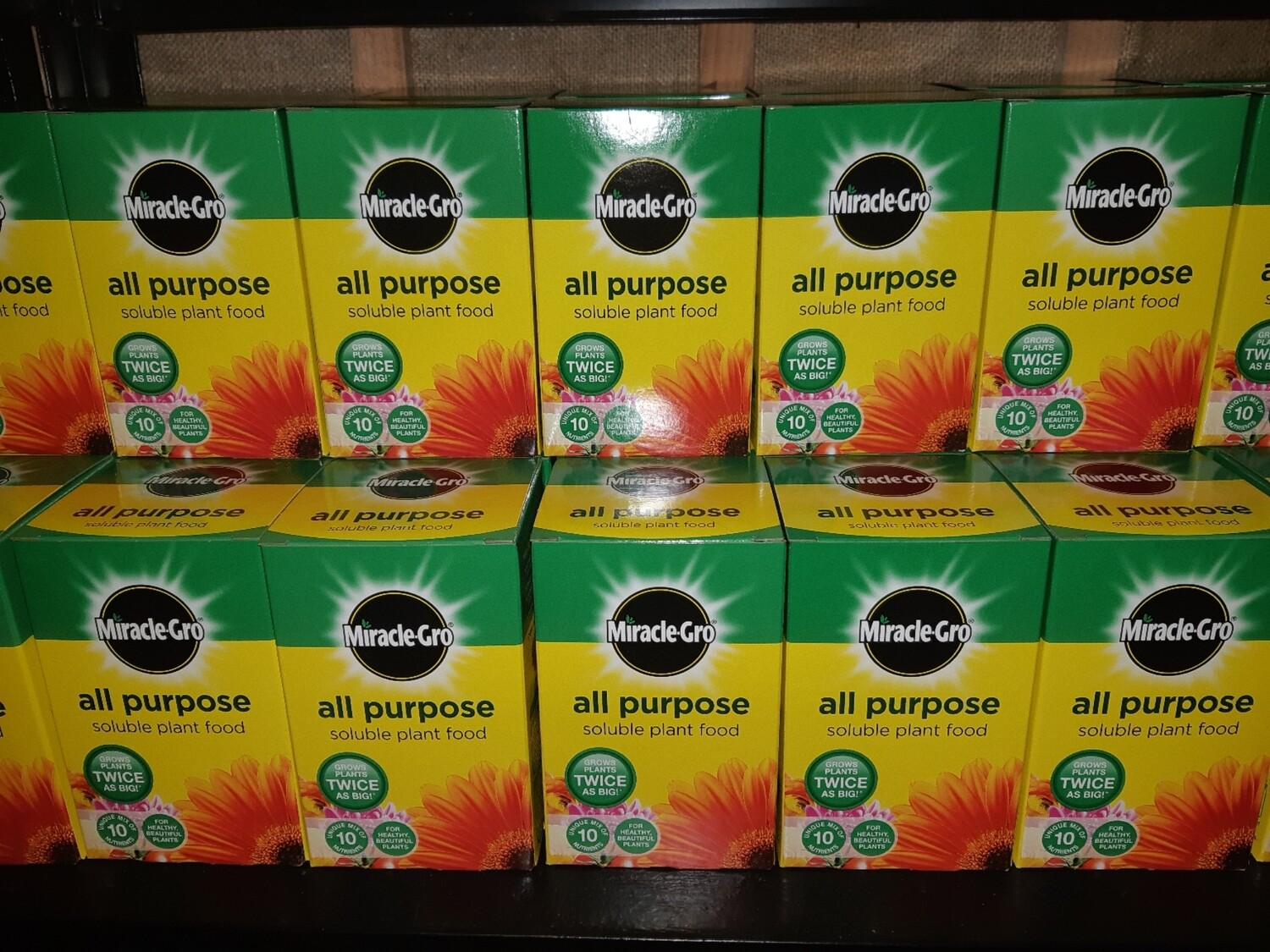 Zzz Miracle Gro all purpose plant food  500g