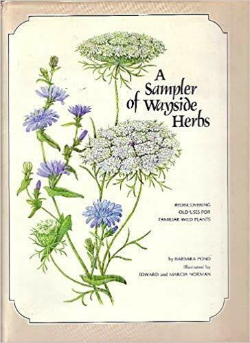 A Sampler of Wayside Herbs