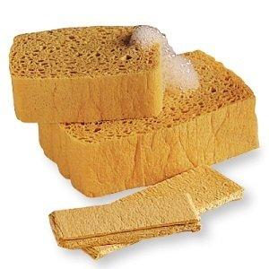 PopUp Sponge - 2 Pack