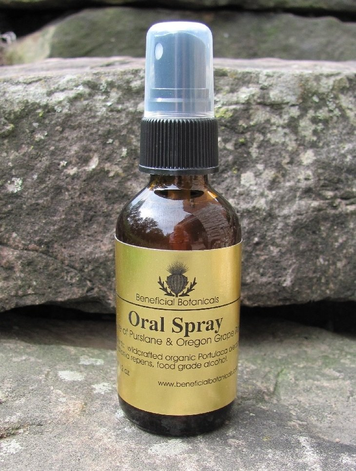 Oral Spray Blend - Purslane & Oregon Grape Root