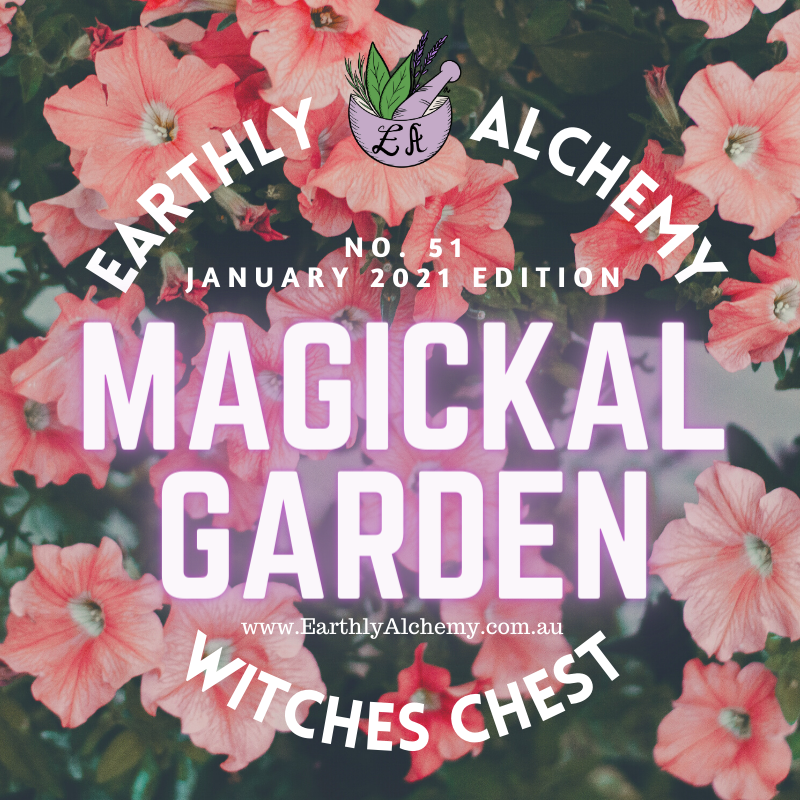 ~ Second Wave Release ~   January 2021 < Magickal Garden >  Witches Chest no. 51