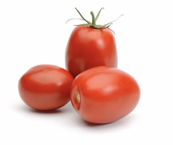 VEG【蔬菜】罗马番茄 ~1.1LBs