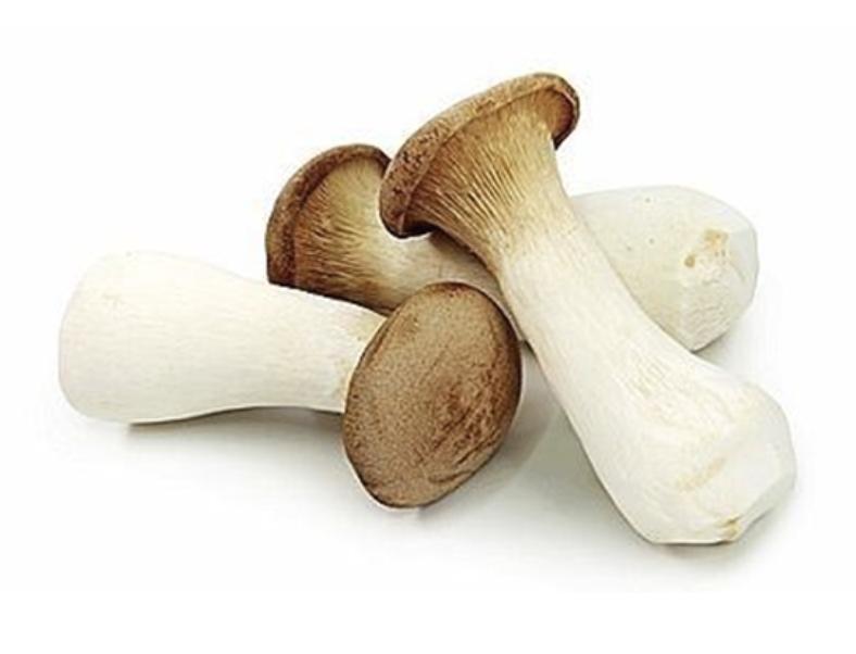 VEG【蔬菜】有机杏鲍菇 ~270g(9.5oz)