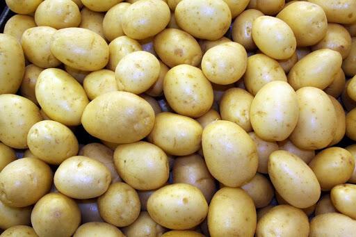 VEG【蔬菜】白马铃薯4个~约1.5lb