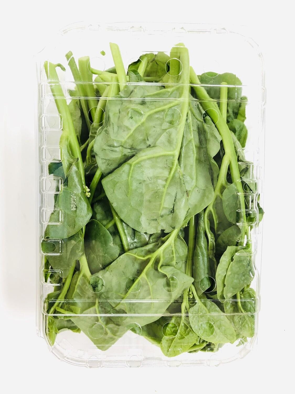 VEG【蔬菜】潺菜一份~约1.6lb