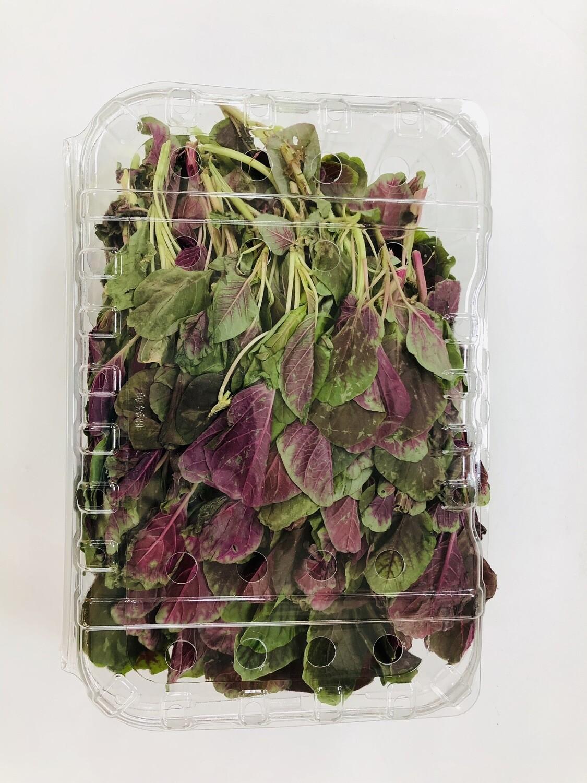VEG【蔬菜】红觅菜一份~约1.2lb