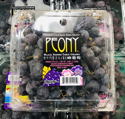 巨峰葡萄 KYOHO GRAPES~1 Box