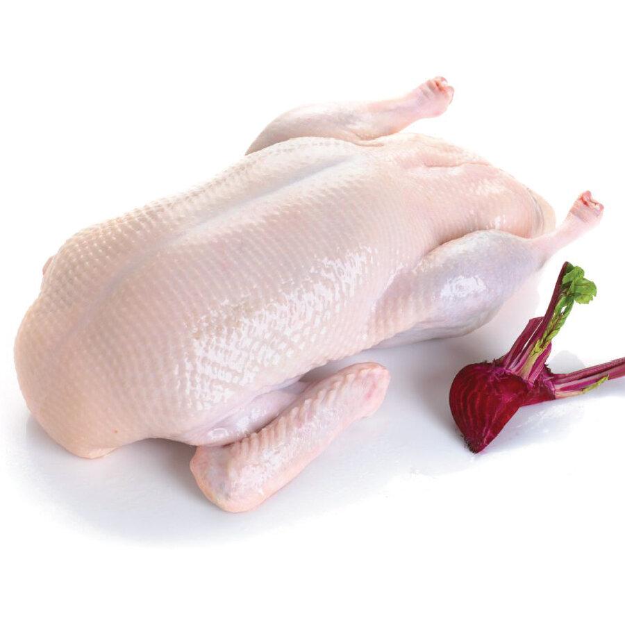 鸭子 ~5lbs Duck (Product of USA)