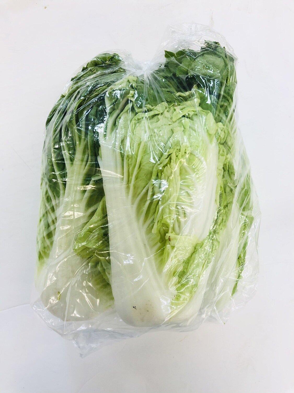 VEG【蔬菜】甜白菜~约3LB