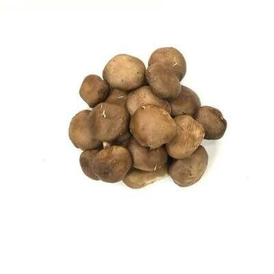 VEG【蔬菜】香菇 ~约0.8lb