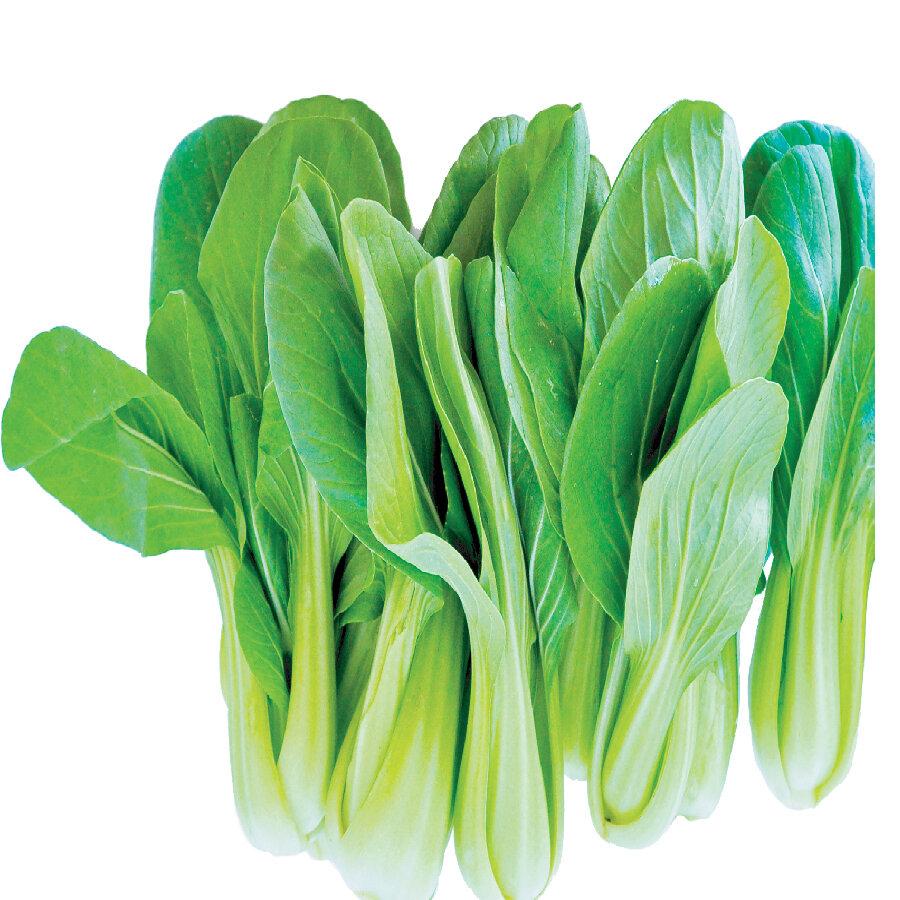 青江菜苗 一份~1.5lbs Baby Green Bok Choy ~1.5lbs