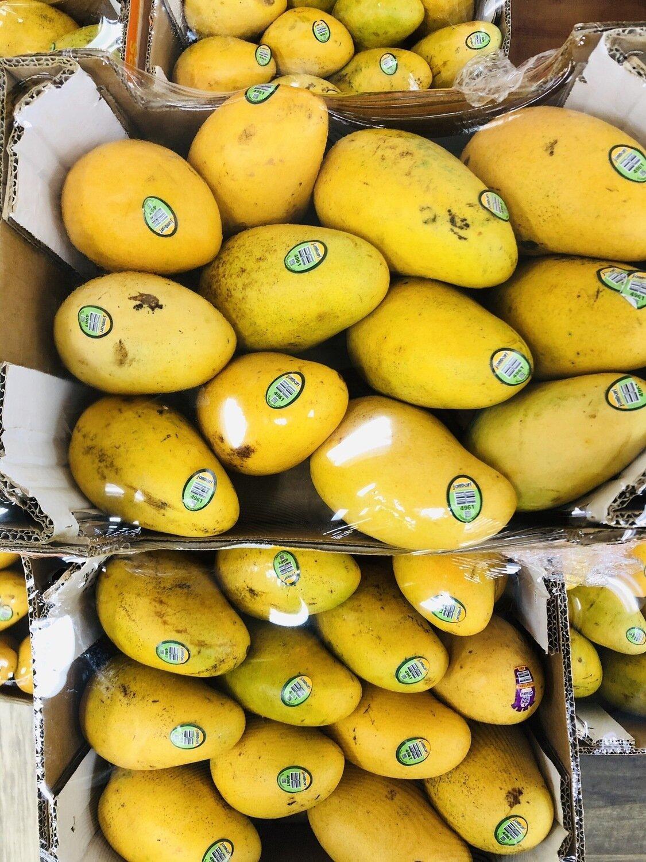 黄芒果~1 箱 Mangoes~1 box