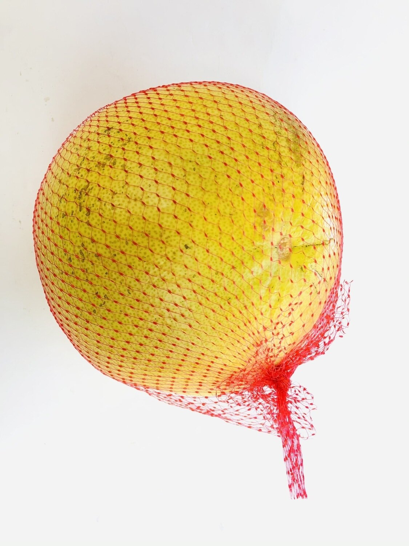红肉沙田柚 1个 RED POMELO