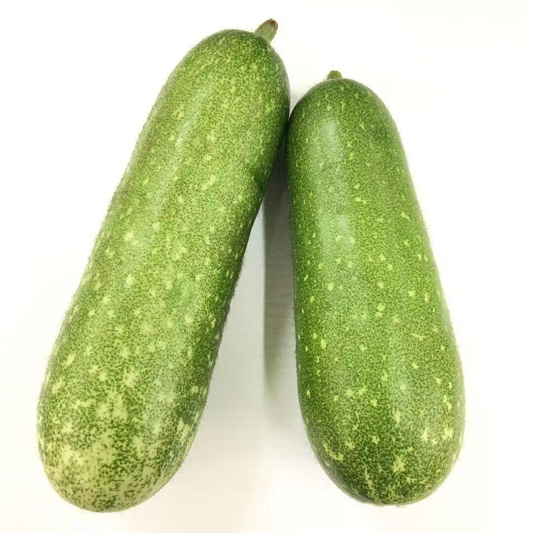 VEG【蔬菜】毛瓜1份 ~约2lbs