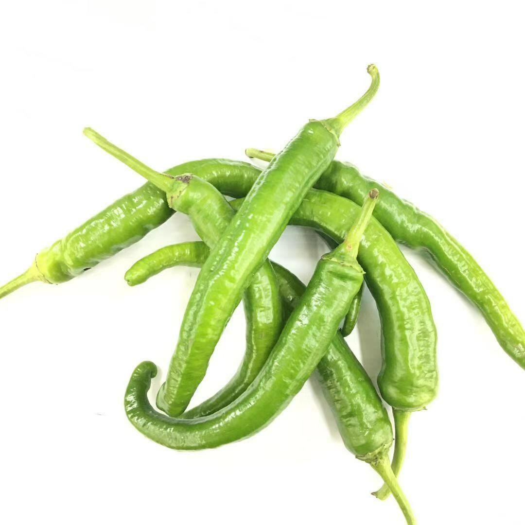 VEG【蔬菜】牛角椒1份 ~约1lb