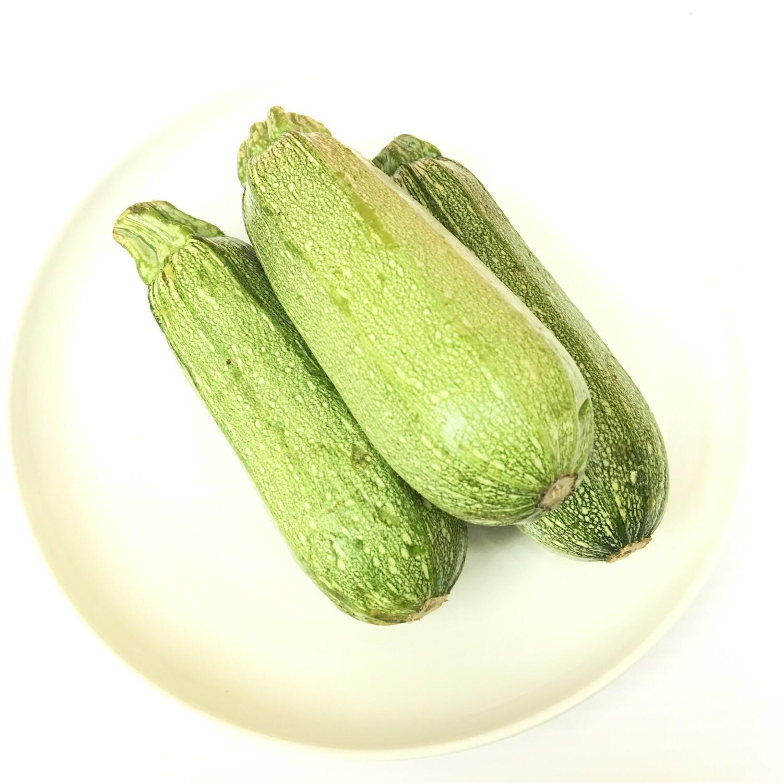 VEG【蔬菜】墨西哥丝瓜 ~约1.5lbs